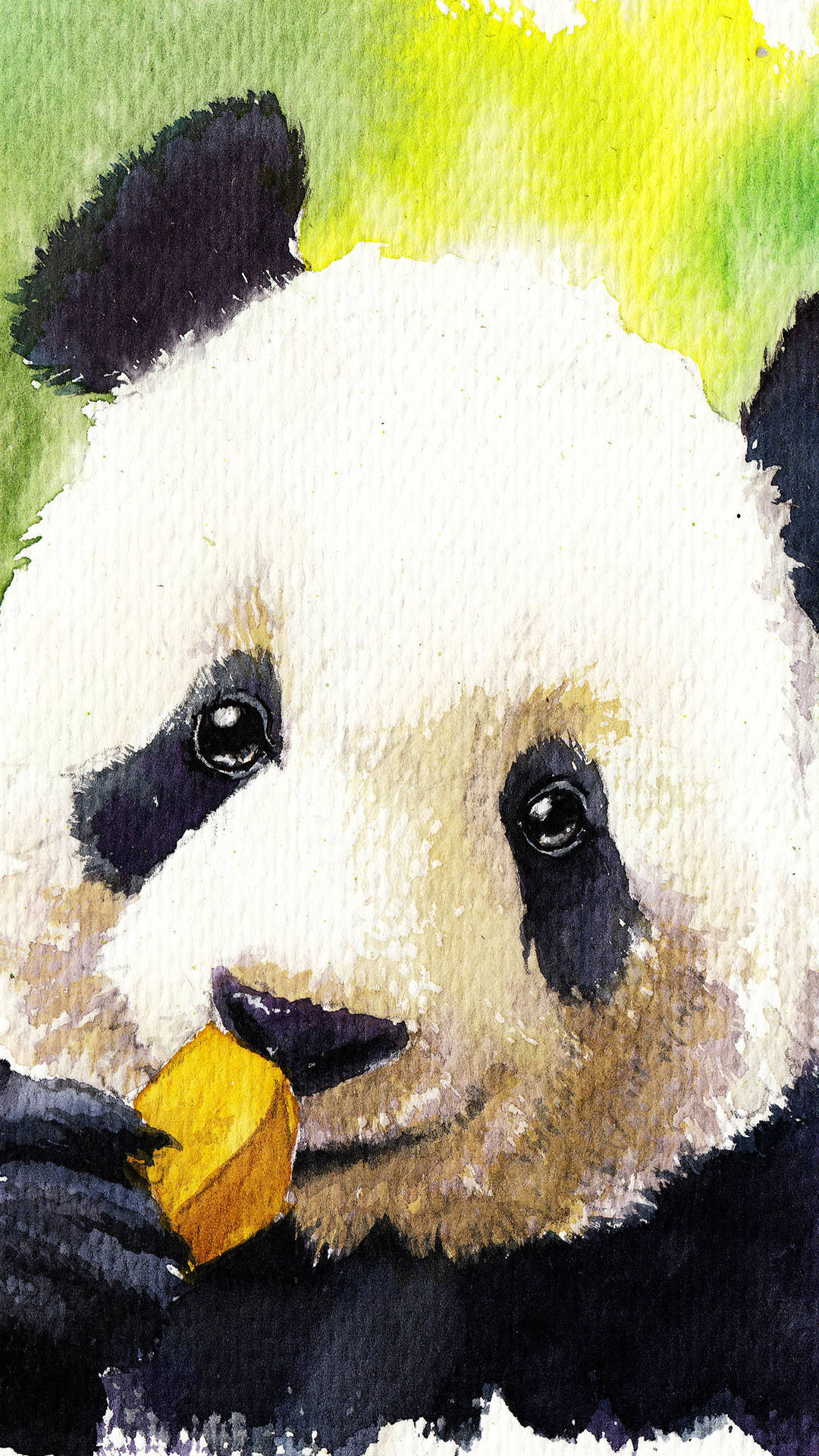 11 Cute Panda Wallpapers For IPhone With 1920x1080 Wallpaper Ipad