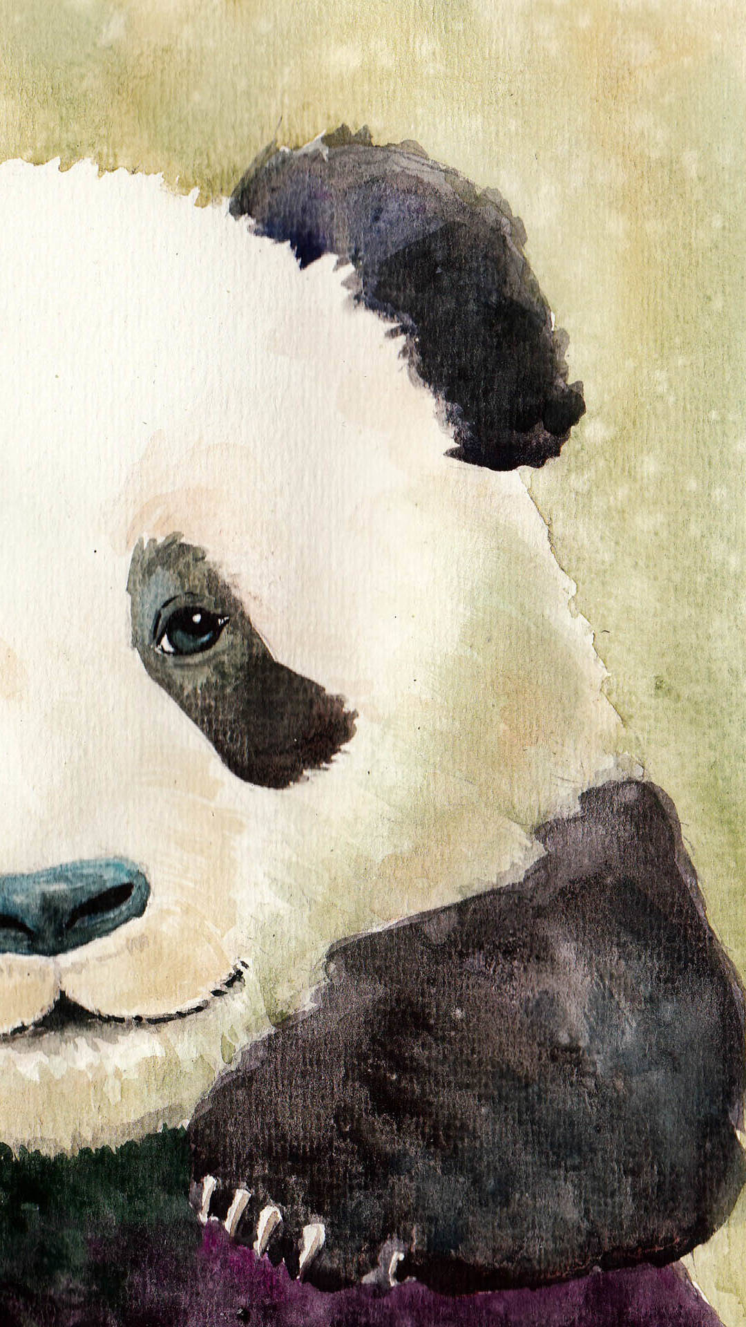 11 Cute Panda Wallpapers For IPhone With 1920x1080 Resolution