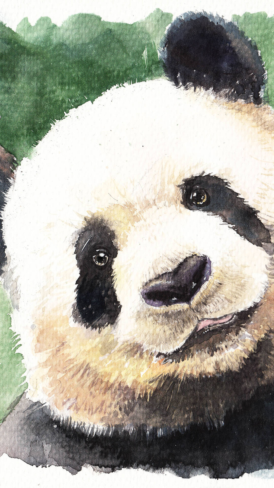 11 Cute Panda Wallpapers for iPhone With 1920x1080 ...