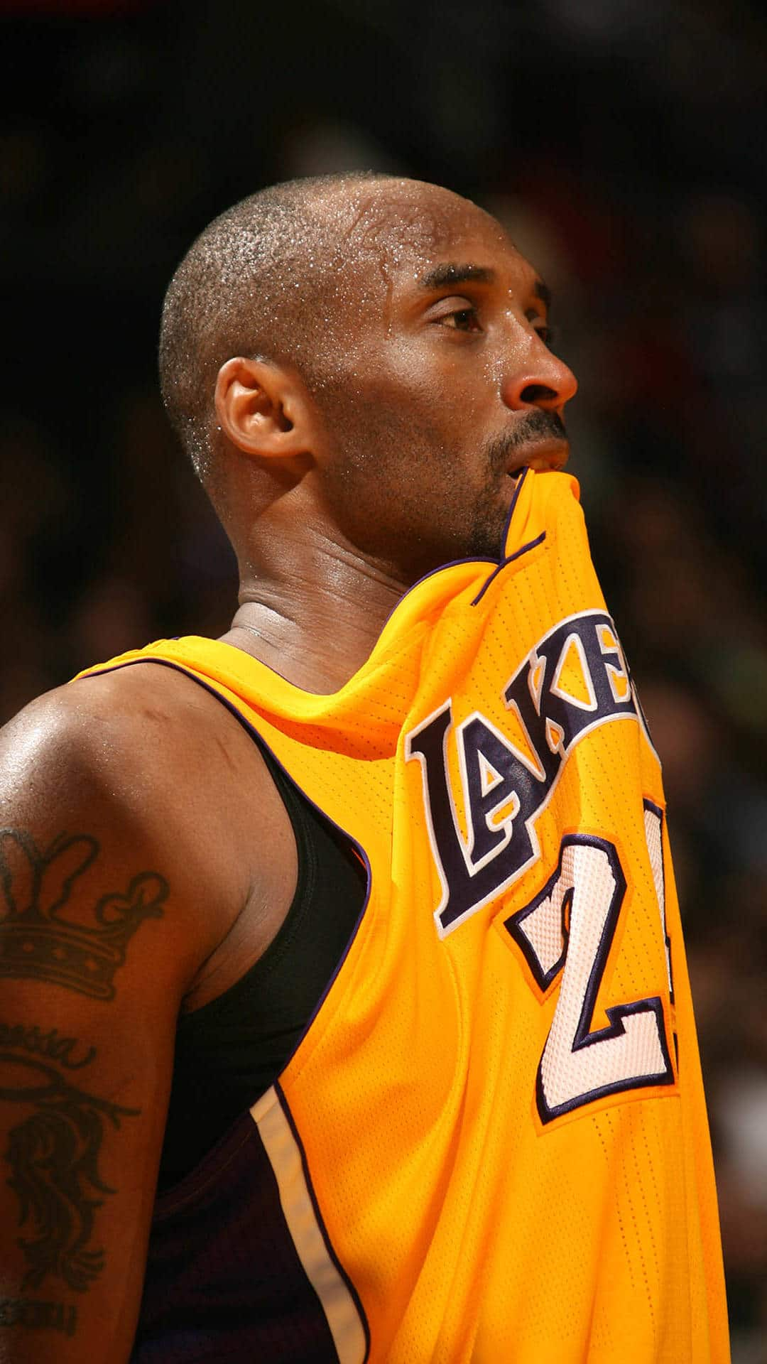 30+ Bryant 2016 Kobe - Lives HD Wallpapers for Apple iPhone