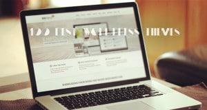 100 best wordpress themes